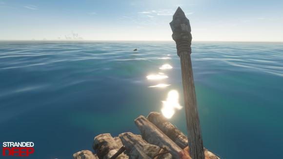 Shark Raft_wm