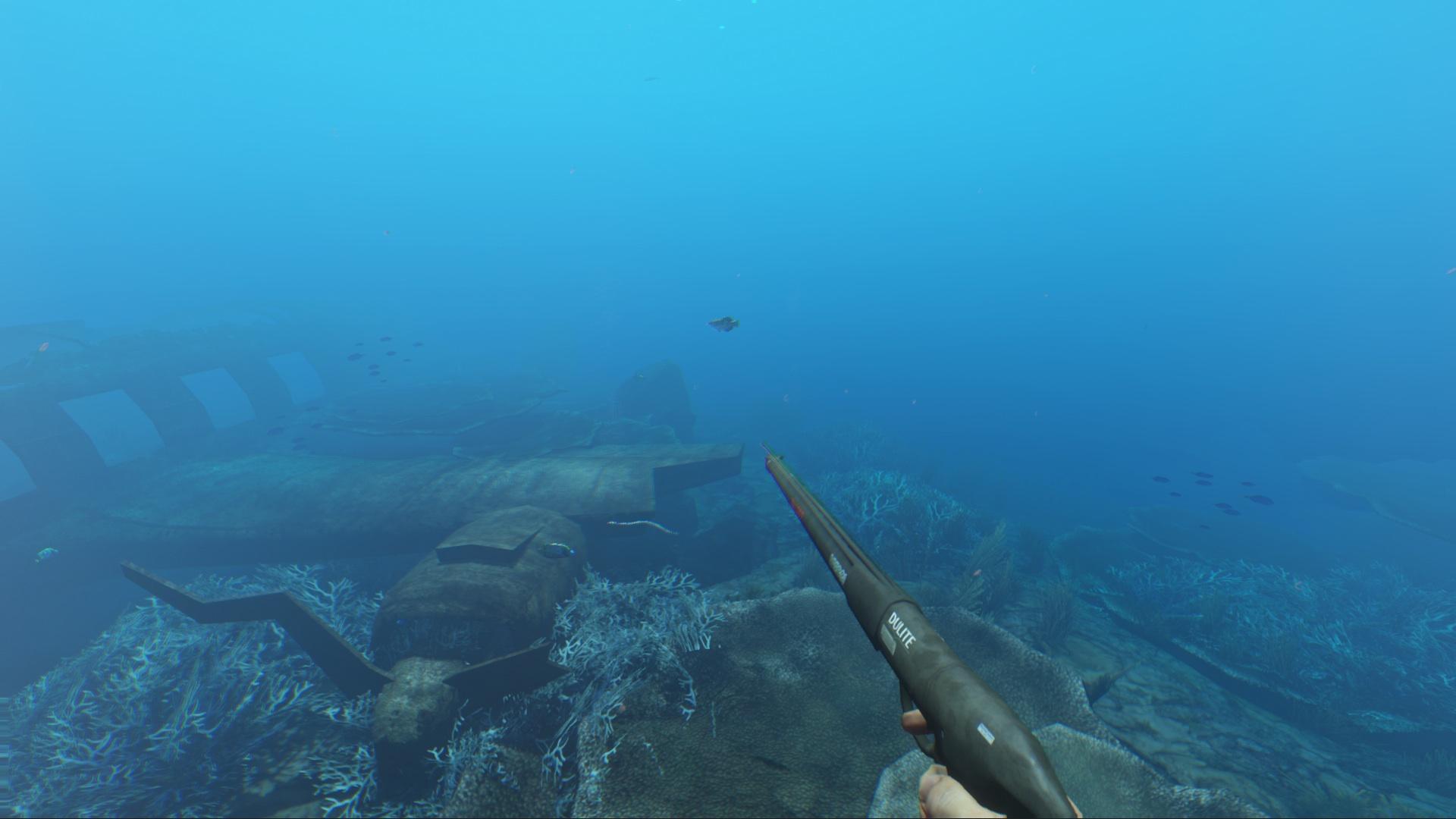 spearfishing_2.jpg (1920×1080)