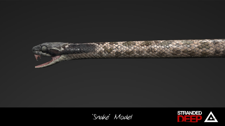 SnakeProgress2
